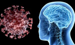 Study says Corona virus affects brain also